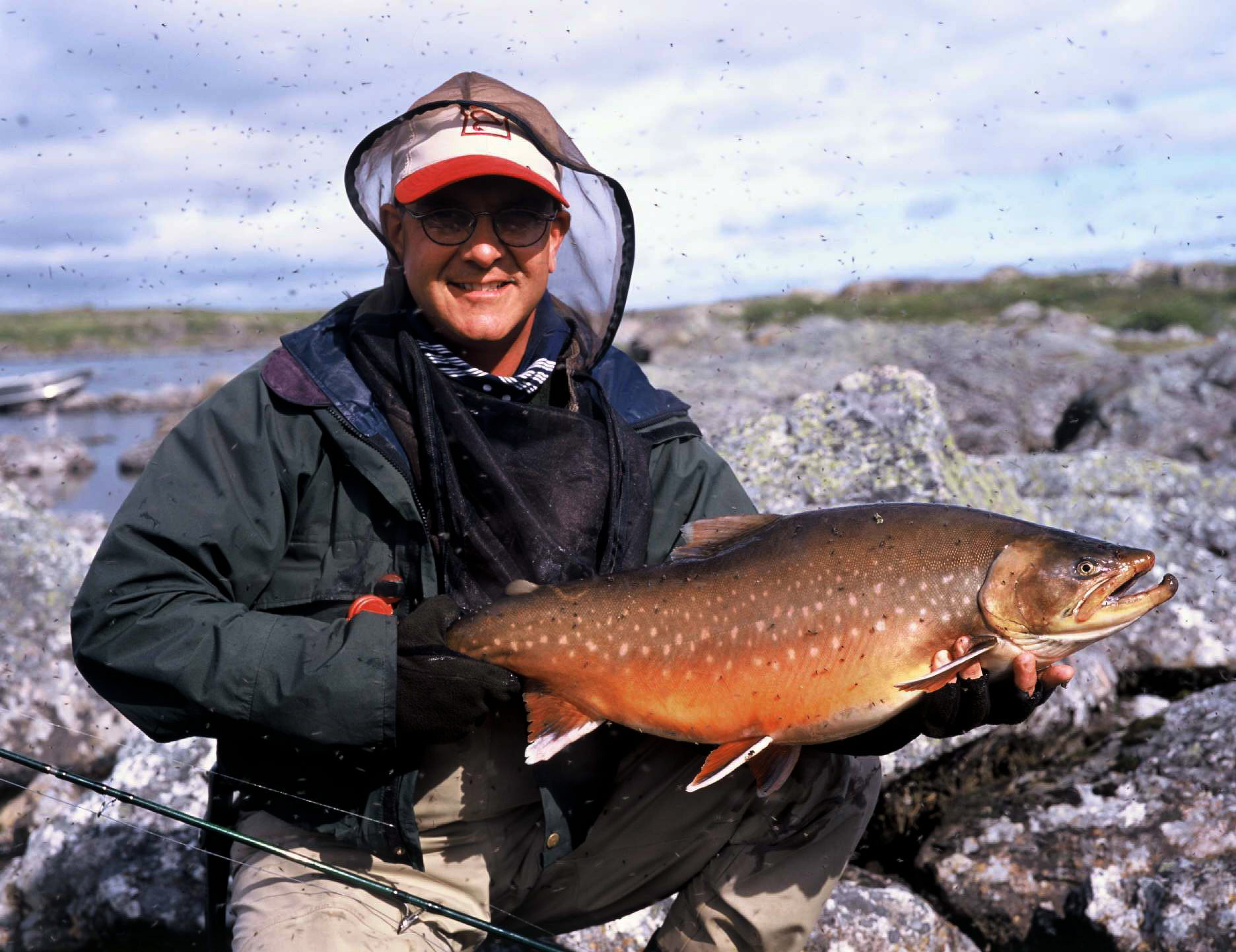 голец арктический наша рыбалка
