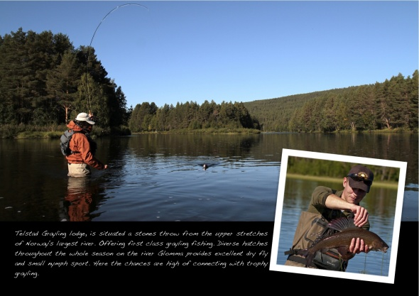 Gamefish page 7 Telstad